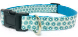 Dog Collar, Pet Collar, Pattern Collar, Lead, Leash, Cat Collar, Custom Pet Collar, Personalised Pet Collar