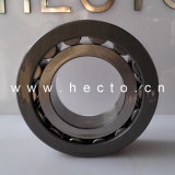 Entity Bushed Needle Roller Bearing Cage and Inner Ring