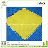 Colorful Cheap Best Price Foam PVC or EVA Play Mat