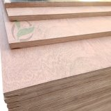 Truck Floorboards 28mm Container Parts Marine Plywood Sheets