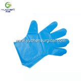 Wholesale Disposable Clear Cheap Plastic CPE Glove for Food-Preparing