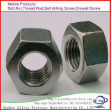 Galvanized Carbon Steel Hex Head Nut /Hex Nut DIN 934 M8, M10, M12