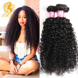 2016 New Arrival 7A-Grade Curly Wave Unprocessed Indian Virgin Hair Extension