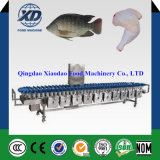 Multi-Level Weight Sorting Machine for Chicken, Weight Scale