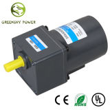 GS High Torque 15W~250W 42mm~104 Mm AC Induction Motor for Home Machinery