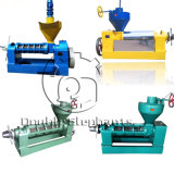 Cold Press Palm Kernel Oil Expeller Palm Kernel Oil Presserextraction Machine Price