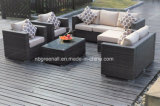 Comfortable Combination Garden Wicker Sofa Outdoor Rattan Furniture (GN-9114S)