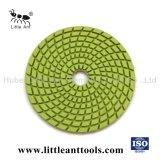 Factory Wholesale Diamond Clean Disk Polishing Tools