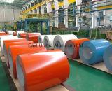 Color Coated Prepainted Aluminum Sheet/Coil