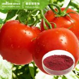 100% Natural Best Quality Lycopen Powder Tomato Extract