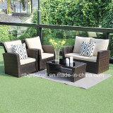 4PCS Kd Outdoor Garden Furniture for Patio Rattan Wicker Sofa