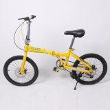 Wholesale Folding Kids Bike with Disc Brake (9621)