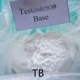 Muscle Growth Testost Base Building Material Testoste Raw Material