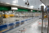 Automatic 3 in 1 Water Bottle Filling Packing Machine