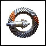 Differential Spiral Bevel Gear 7/37