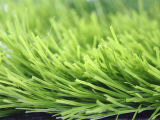 Artificial Grass for Football Field (A660118GD8801)