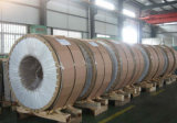 0.3-3.0mm Thickness Cold Rolled Stainless Steel Coil and Sheet Material