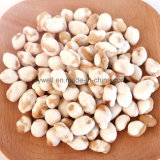 Wholesale Good Price Soya Beans Natural Food