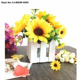 Wholesale Universal Garden Smart Flower Pot
