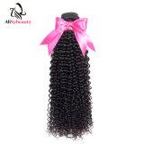 Alinybeauty Wholesale 100% Unprocessed Virgin Brazilian Human Hair Kinky Curly