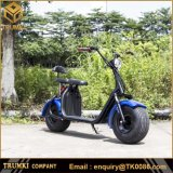 1500W 2 Wheel 2 Seats Wide Tire Electric Scooter E Bike