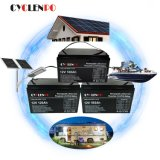 Deep Cycle 12V 24V 100ah 200ah 300ah Lithium Ion LiFePO4 Battery for Power and Solar Storage