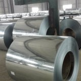 Hot Dipped Galvanized Steel Coil, Cold Rolled Steel Sheet Prices