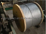 Tongguan Brand Steel Wire Strand 1*7 1*19