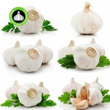 China New Crop Hot Sales Best Fresh Natural Pure White Garlic