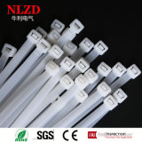 Cable accessories Nylon cable ties in full sizes