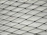 Black Color PE Monofilament Fishing Nets