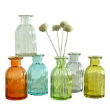 Wholesale Ccustomized Glass Dried Flower Vases for Home Decoration