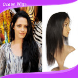 Brazilian Virgin Human Full Lace Wig with Baby Hair