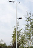 Roadway Lights, Roadway Galvanized Lighting Pole