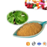 High Quality Pure Icariin 10% Epimedium Extract Capsule