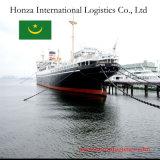 Logistics Ship From Guangzhou or Tinajin to Nouadhibou of Mauritania