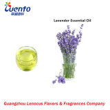 Pure Lavender Oils for Making Soap/ SPA / Massage