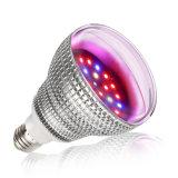 E27 Indoor Lighting LED Lamp Energy Saving Bulb