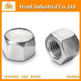 Made-in-China DIN917 Stainless Steel Hex Cap Nut
