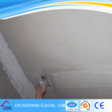 Interior Wall Putty Powder /Plaster Cement for Wall