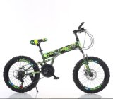 20inch Folding MTB Model Bicycle Wts110