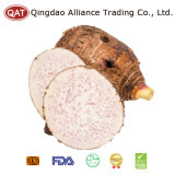 Top Quality Fresh Whole Taro with Good Price