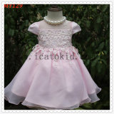 Elegant Embroidery Princess Party Wears for Girls Dress