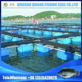 Large Aquaculture Fish Tank for Fish Farming