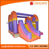 Famous Design Inflatable Jumping Bouncer Slide Combo (T3-400)