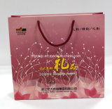Eco-Friendly Customized Handled Paper Gift Bag