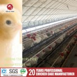 Chicken Wire Mesh Farming Machinery Chicken Layers Poultry Farms