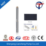 Liancheng Non-Clogging Garden Agricultural Well Reservoirs DC AC Submersible Solar Water Pump