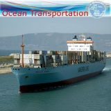 "Ocean Transportation Fumigation, Pallet Service to St Petersburg (20"" 40"")"