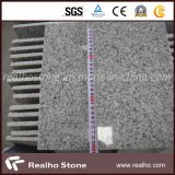 Popular Chinese Cheap Grey Granite G603 Granite